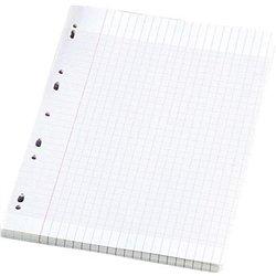 Feuillet recharge classeurs 200 pages A4 seyes blanc 90g (Etui de 100)