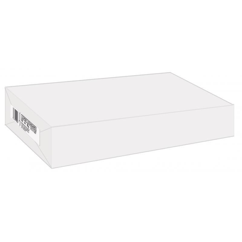 Ramette 500 feuilles 80g blanc 14,8 x 21 cm