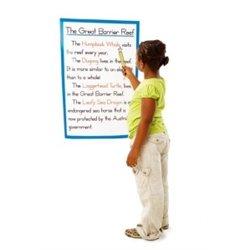 Réglet 26 cm gradué aide à la lecture (Ensemble de 12)