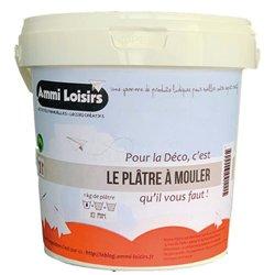 Seau de 1 kg plâtre