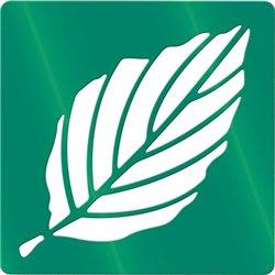 Ensemble de 12 pochoirs variétés de feuilles d'arbres 200 x 200 mm