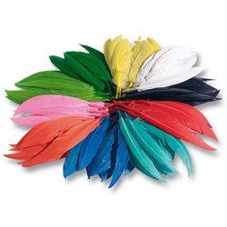 Sachet 100 gr plumes indiens