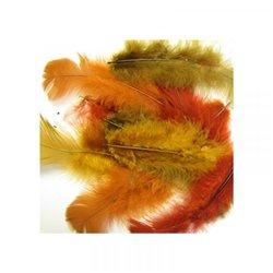 Sachet 150 plumes assorties couleurs de l'automne