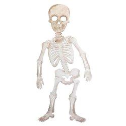 Lot de 12 squelettes géants en carton