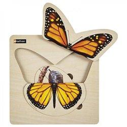 Puzzle Cycle de vie - Le papillon
