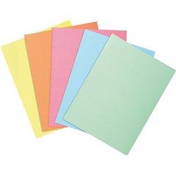 Paquet de 100 chemises dossier 210 g, peau, 24x32 cm couleurs assorties