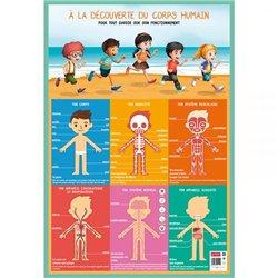 Poster Corps humain