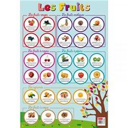Poster Les fruits