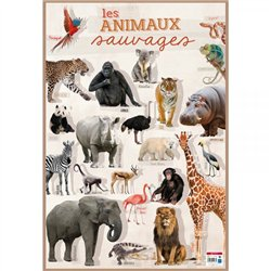 Poster Les animaux sauvages