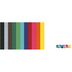 Paquet 25 feuilles colorline canson 50x65 cm 150g 12 couleurs assorties