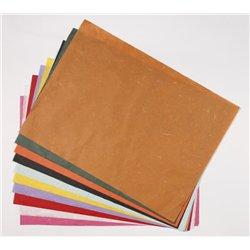Paquet 20 feuilles papier mûrier 48x65 cm couleurs assorties