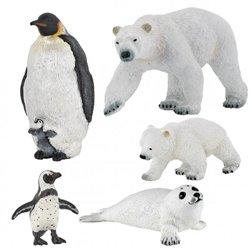 La famille polaire